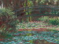 Water-Lily-Pond