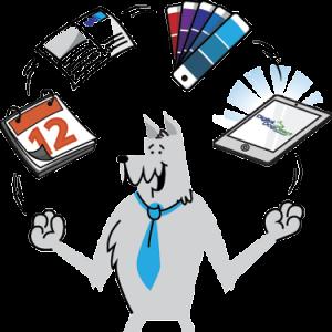 Why Choose Digital Dog Direct